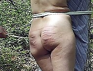 Naked girl tied to a tree in the forest and mercilessly caned - severely striped cheeks